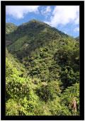 Krajina kolem Banaue