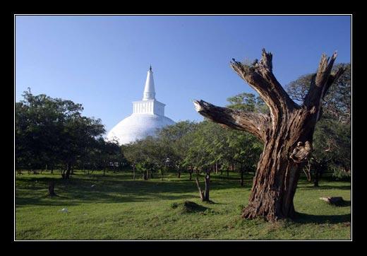 Sri Lanka. leden 2008
